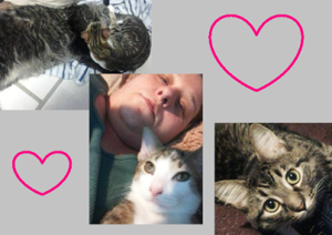 Mitya and Kittties